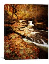 Autumn In The Glen, Canvas Print