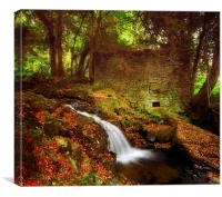Mill On The Floss, Canvas Print