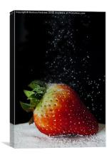 red strawberry, Canvas Print