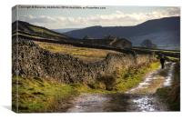 Footpath to Grassington, Canvas Print