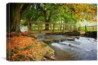 Autumn In Beresford Dale, Canvas Print