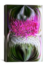 Thistle In Glass, Canvas Print