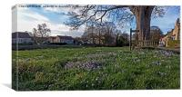 Spring on the village green, Canvas Print
