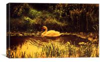 Swan at the Golden Lake, Canvas Print