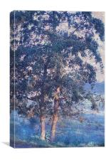 Blue Trees. Monet Style , Canvas Print