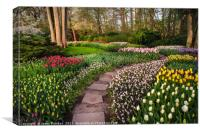 Pathway through Colorful Flowerbeds in Keukenhof, Canvas Print