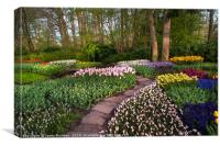 Pathway through Keukenhof Flowerbeds 1, Canvas Print