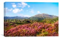 Vivid Glimpses Of Autumn In Trossachs, Canvas Print