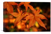 Golden Leaves of Autumn, Canvas Print