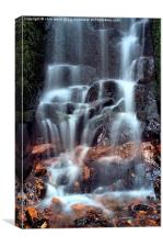 Kennel Vale Falls, Canvas Print