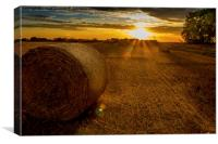 Making hay whilst the sun shines, Canvas Print
