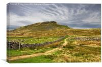 Path to Penyghent North Yorkshire, Canvas Print