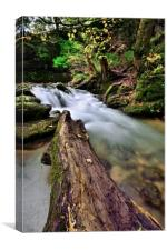 Waterfall At Janets Foss -  Malham - Yorkshire    , Canvas Print