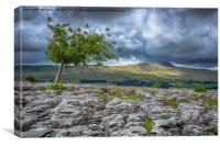 Whenside from Southerscales, Canvas Print