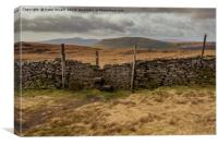 Pen-Y-Ghent from Fountains Fell, Canvas Print