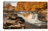 Stainforth Force, Yorkshire Dales, Canvas Print