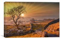Sunset at Winskill stones, Canvas Print