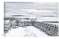 Ingleborough from Ribblehead , Canvas Print