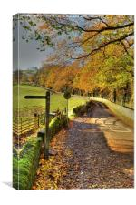 Country Lane In Autumn, Derbyshire, Canvas Print