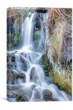 Ethereal Flow, Canvas Print
