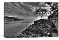 Black and White in Torquay, Canvas Print