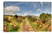The old railway track leading up to Stowes Hill, Canvas Print