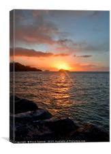 Sunrise at Meadfoot Beach in Torquay, Canvas Print