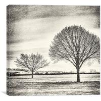 Two Trees with texture, Canvas Print