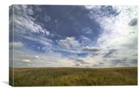 Grass and sky, Canvas Print