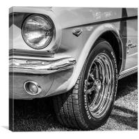 Mustang Sparkle, Canvas Print