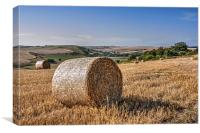 South Downs Harvest, Canvas Print