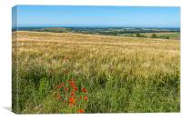 Downland Red, Canvas Print