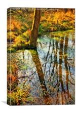 Reflections on the Pond, Canvas Print