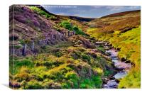 Moorland Stream in the Yorkshire Dales, Canvas Print