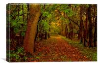 Autumn Wood, Canvas Print