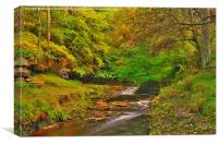 Hamsterley Forest in Autumn, Canvas Print