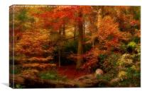 Dreamy Autumn Woodland Colours, Canvas Print