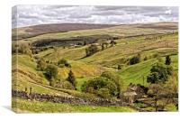 Weardale Countryside North Pennines, Canvas Print
