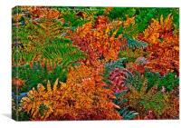 Ferns in Autumn Colours, Canvas Print