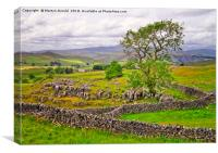 Yorkshire Dales countryside in Malhamdale, Canvas Print