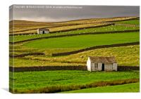 Stone Barns in the Teesdale Landscape, Canvas Print