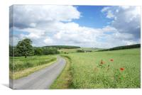 Peaceful country lane, Canvas Print