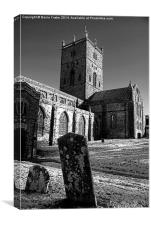 St Davids Cathedral Monochrome, Canvas Print