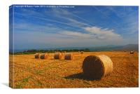 Preseli Backdrop, Canvas Print