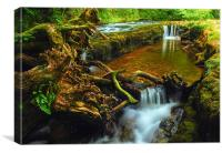 Waterfall county, South Wales, Canvas Print