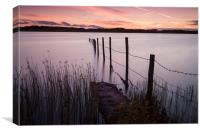 Kenfig Pool posts, Canvas Print