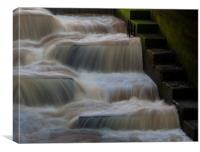 Fish Ladder, Canvas Print