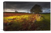Approaching storm over the Brecon hills, South Wal, Canvas Print