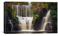 Penllergare waterfall, Canvas Print