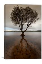 Kenfig Nature reserve and pool, Canvas Print